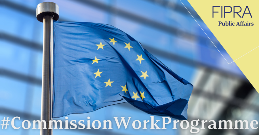 Commission Work Programme 2021: Accelerating the green and digital transition